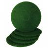 Disque Vert - Lot de 5