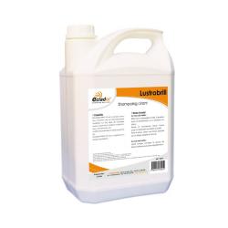 Spray Renove Brillant - Bidon 5 Litres